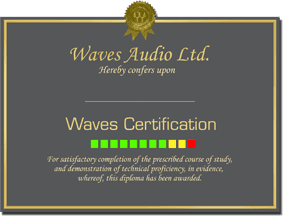 Waves Certification Diploma