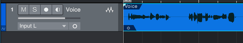 Create an audio track and import or record your vocal signal